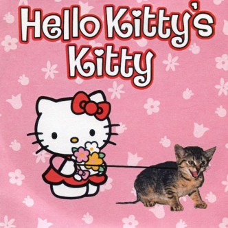 Hello Kitty's Kitty
