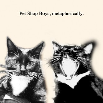 Pet Shop Boys, metaphorically.