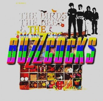 The Birds, The Bees and the Buzzcocks
